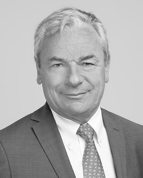 Delville Management comité stratégique - Dominique Gaillard